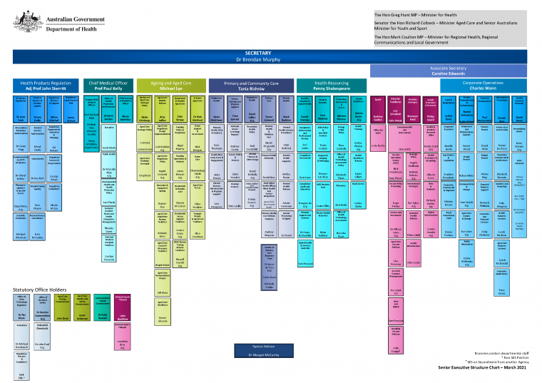 Department of Health organisational chart